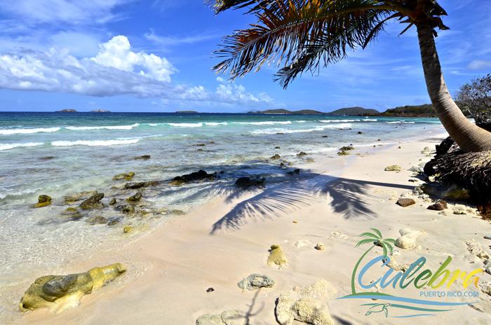 Zoni Beach Culebra Puerto Rico Grand Beauty