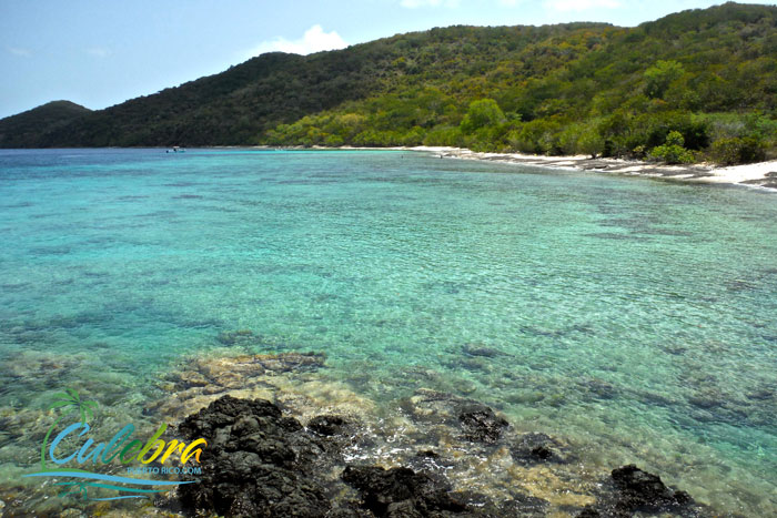 caribbean-best-snorkeling-beaches-carlos-rosario