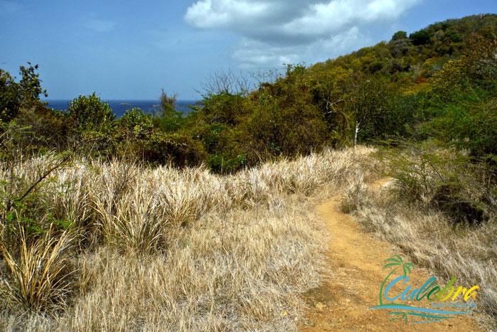 isla-de-culebra-hiking-trail-carlos-rosario-1