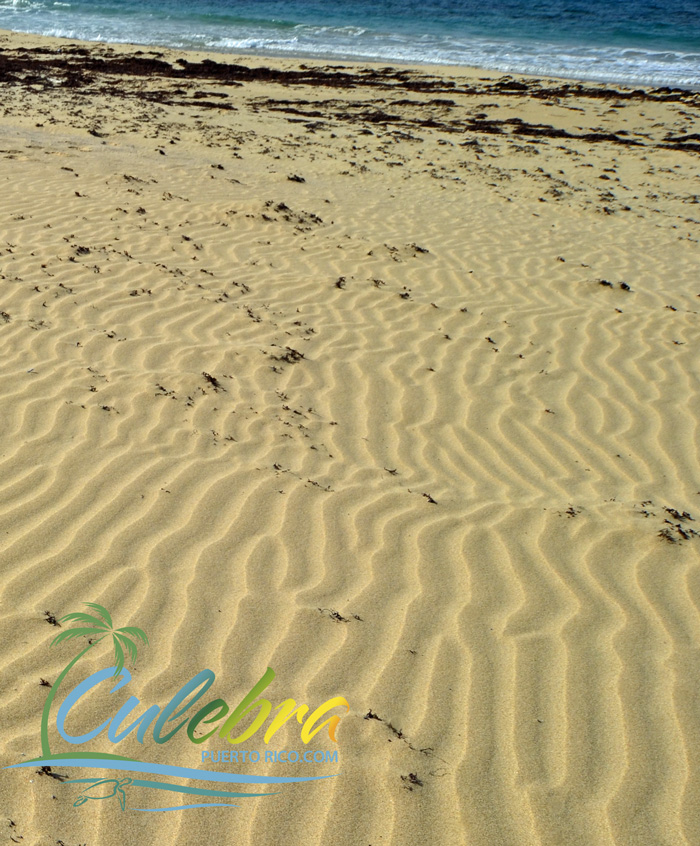 Brava Beach - Ripples on the Sand - Culebra, Puerto Rico