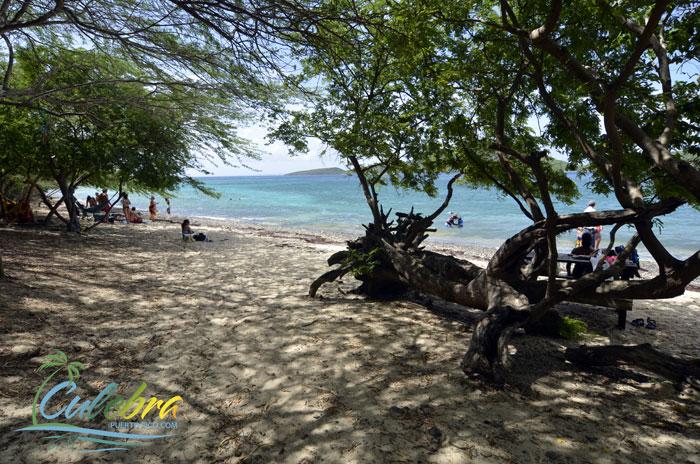 playa-tamarindo-isla-de-culebra-puerto-rico-5
