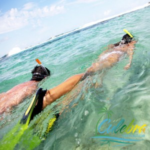 Snorkeling - Things to Do in Culebra, Puerto Rico