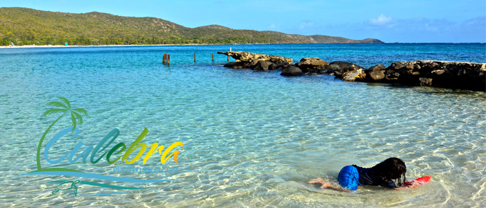 Swim, Relax & Dream - Things to do in Culebra, Puerto Rico