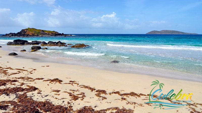 Brava Beach - Beaches - Culebra, Puerto Rico