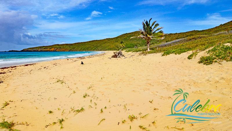 Resaca Beach - Beaches of Culebra, Puerto Rico