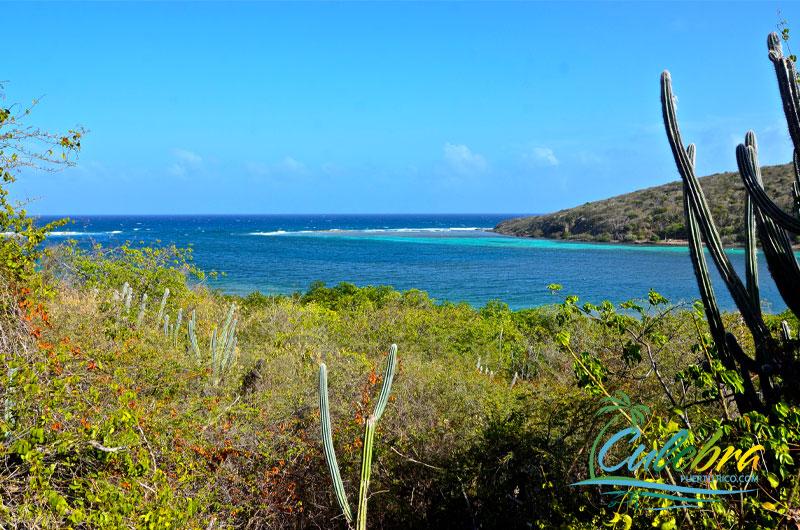 Punta Soldado - Culebra, Puerto Rico