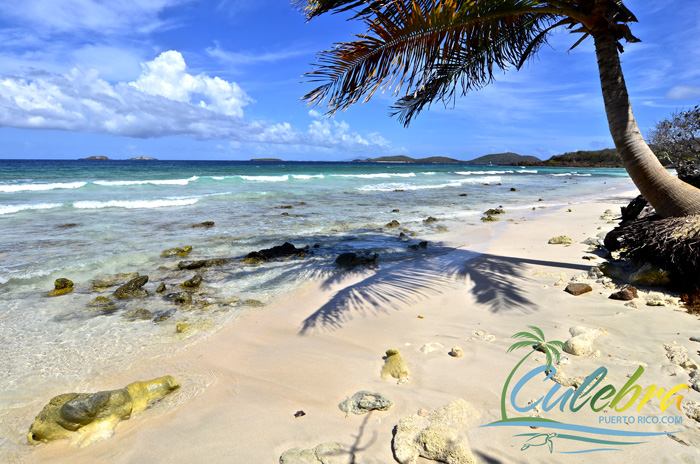 Zoni Beach Culebra Puerto Rico Grand Beauty