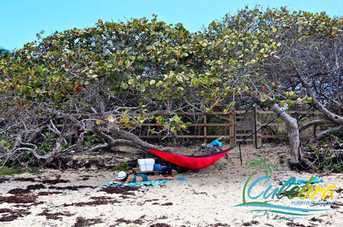 caribbean-romantic-beaches-culebra-puerto-rico-hammock