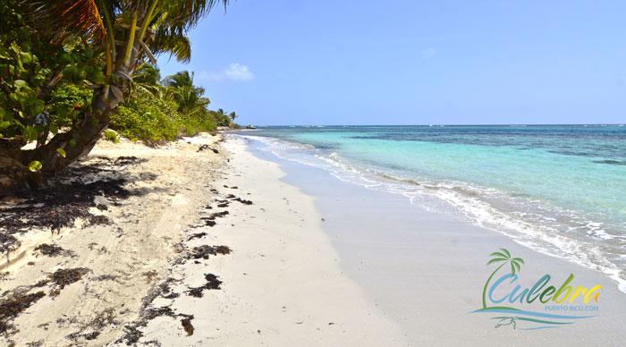 Flamenco Beach Culebra Puerto Rico 3