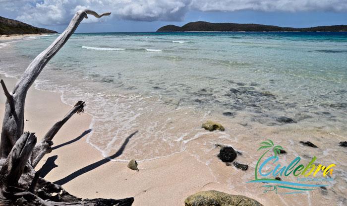 mejores-playas-de-puerto-rico-culebra-zoni