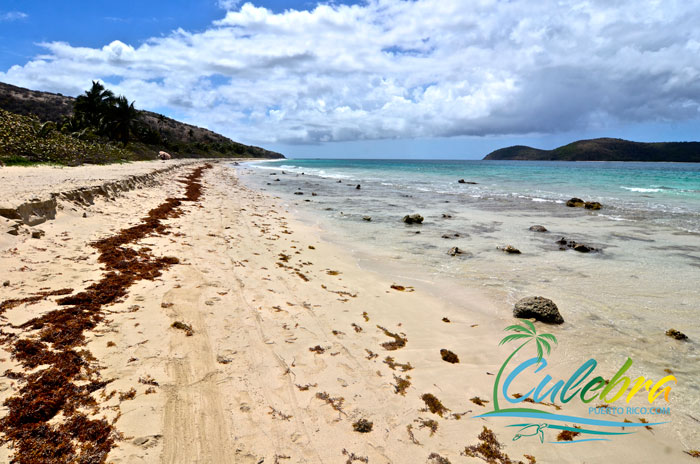 playas-culebra-puerto-rico-zoni-final
