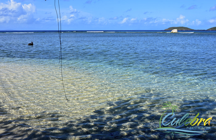 clear-water-beaches-puerto-rico-datiles