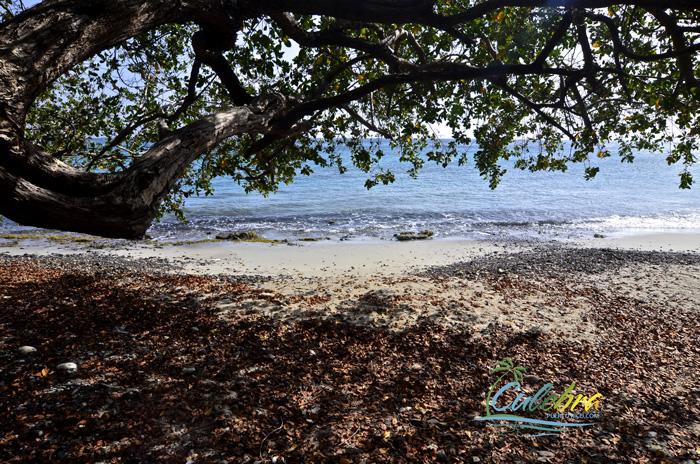 culebra-beaches-secluded-punta-soldado-shade