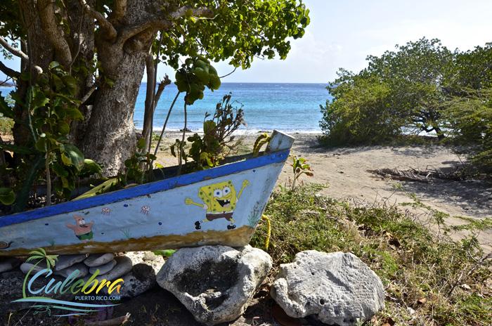 garden-punta-soldado-culebra-island-puerto-rico