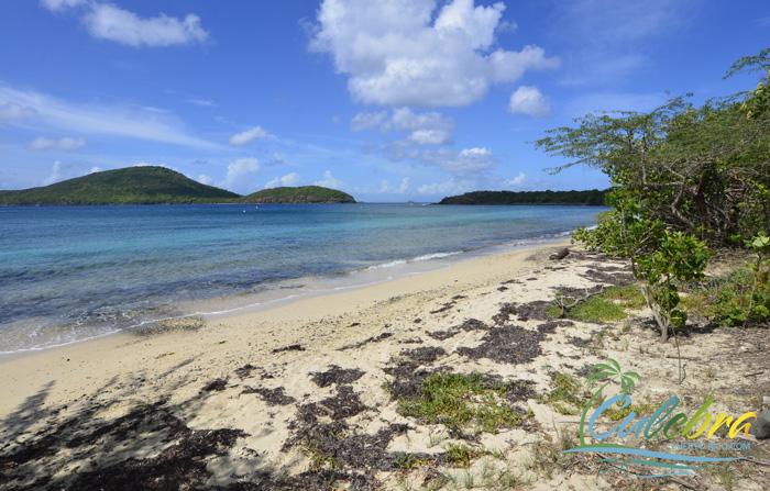 Tamarindo Beach Isla De Culebra Puerto Rico