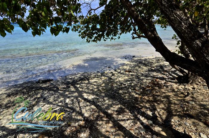 Go snorkeling to Melones Beach - Culebra, Puerto Rico