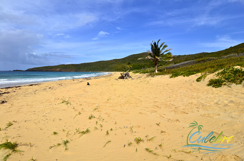Playa Resaca - Best Secluded beaches in the Caribbean - Culebra, Puerto Rico