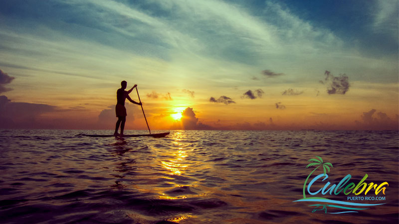 Paddleboarding - Things to do in Culebra - One of the islands of Puerto Rico