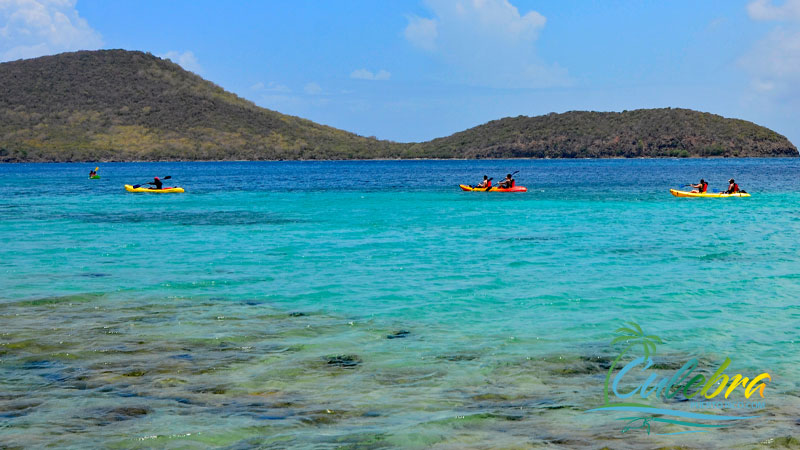 Kayaking - Things to do in Culebra Island, Puerto Rico