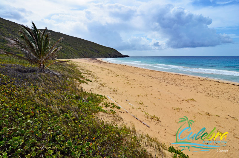 Playa Resaca - Beaches of Culebra Island, Puerto Rico